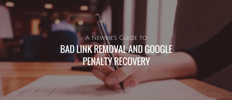 A Newbie's Guide to Bad Link Removal - Google Penalty Recovery